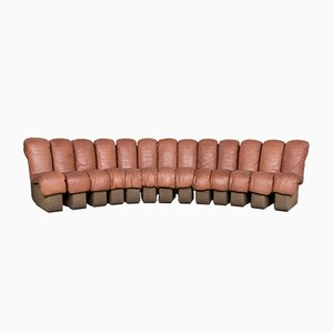 Brown DS 600 Modular Sofa by Eleanore Peduzzi-Riva, Heinz Ulrich & Ueli Berger for de Sede, 1970s