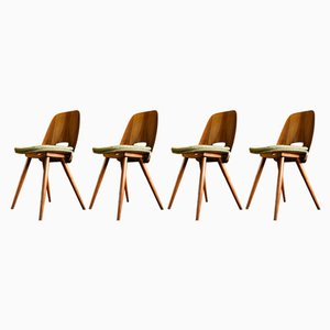 Plywood & Walnut Lollipop Dining Chairs by Frantisek Jirak for Mier, 1962, Set of 4
