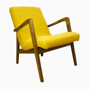 Type 300-138 Beech Armchairs from Bystrzyckie Furniture Factory, 1960s, Set of 2
