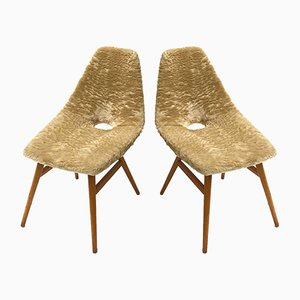Ash and Fur Side Chairs by Judit Burian & Erika Szek, 1959, Set of 2
