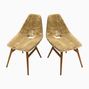 Beistellstühle aus Eschenholz mit Fellbezug von Judit Burian & Erika Szek, 1959, 2er Set