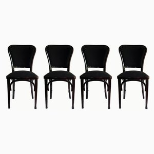 Art Nouveau Model 717 Chairs by Gustav Siegel for Jacob & Josef Kohn, 1901, Set of 4
