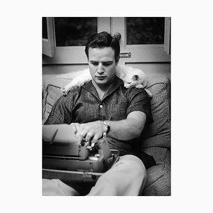 Marlon Brando Druck von Murray Garrett