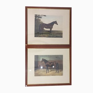 Prints by A. C. Havell, 1923, Set of 2