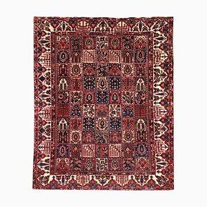 Vintage Bakhtiar Carpet, 1960s