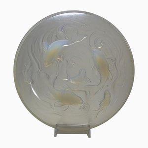 Milieu de Table en Verre Opalescent de Verlys, 1930s