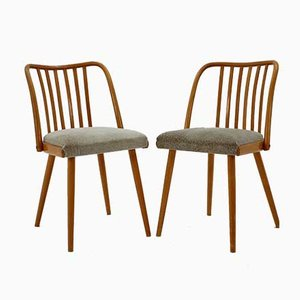 Chaises de Salon Vintage, 1950s, Set de 2