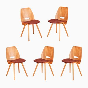 Beech Dining Chairs by František Jirák for Tatra, 1950s, Set of 5