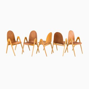 Birch Knock Down Chairs by Yngve Ekstöm for Södra Snickeri, 1950s, Set of 5