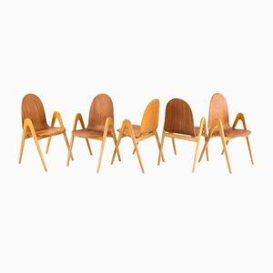 Knock Down Chairs aus Birke von Yngve Ekstöm für Södra Snickeri, 1950er, 5er Set