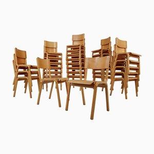 Sillas escandinavas modernas de madera curvada, años 60. Juego de 60