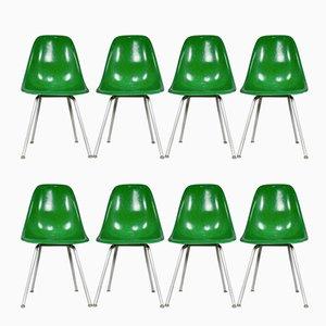 Chaises de Salon DSX par Charles & Ray Eames pour Herman Miller, 1960s, Set de 8