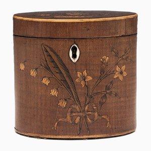 Barattolo da tè ovale Giorgio III in legno, XVIII secolo