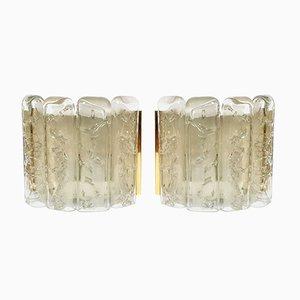 Apliques alemanes de cristal hielo y latón de Doria Leuchten, años 60. Juego de 2