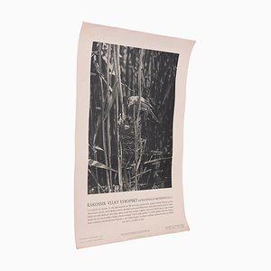Affiche Great Reed Wabler Vintage