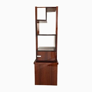 Art Deco French Rosewood & Mirror Shelving Unit by Auguste Vallin, 1930s