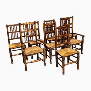 Antike georgianische Esszimmerstühle aus Eschenholz mit Spindelrücken, 8er Set