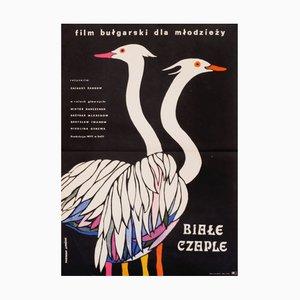Póster polaco de la película Birds Come Flying to Us, 1972