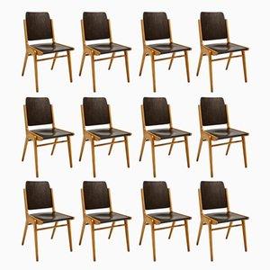 Chaises de Salle à Manger Mid-Century en Hêtre et Contreplaqué par Franz Schuster pour Wiesner-Hager, Set de 12