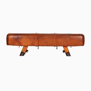 Cavallina da ginnastica vintage industriale in pelle