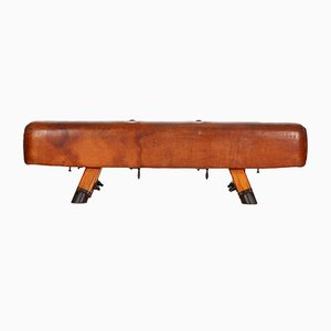 Vintage Industrial Leather Gymnastics Pommel Horse