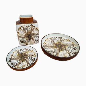 Juego de porcelana de Royal Copenhagen, años 60