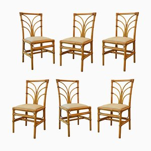 Italian Bamboo Dining Chairs from Vivai del Sud, 1960s, Set of 6
