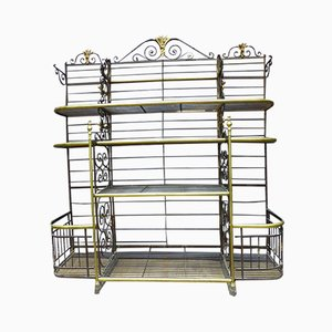 Antique French Bronze Shelving Unit from Dubois