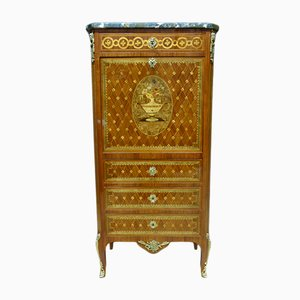 Antique French Bronze and Wood Marquetry Secretaire