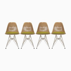 Fiberglass and Metal Dining Chairs with Eiffel Base by Charles & Ray Eames for Herman Miller, 1960s, Set of 4