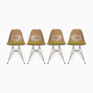 Sillas de comedor de fibra de vidrio y metal con base Eiffel de Charles & Ray Eames para Herman Miller, años 60. Juego de 4