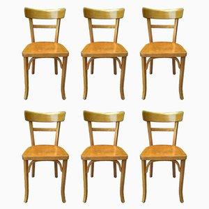 Französische Esszimmerstühle aus Buche von Baumann, 1950er, 6er Set