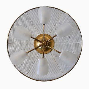 Mid-Century Brass and Acrylic Ceiling Lamp, 1950s