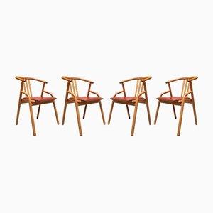 Esszimmerstühle aus Buche & Leder, 1980er, Set of 4