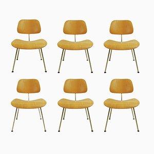 DCM Esszimmerstühle von Charles & Ray Eames für Vitra, 2000er, 6er Set