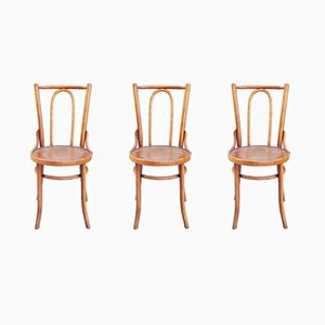 French Bentwood Bistro Chairs, 1950s, Set of 3