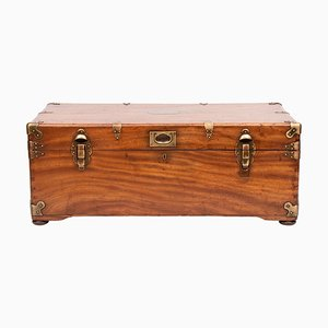 Antique Chinese Camphor Trunk, 1880s