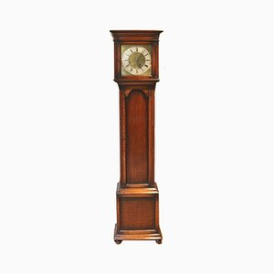 Small Antique Oak Longcase Clock from Mathais Bauerle