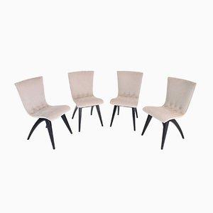Mid-Century Esszimmerstühle mit lackiertem Buchengestell, 1950er, 4er Set
