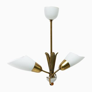 Mid-Century Czech Brass & Glass Flower-Shaped Chandelier, 1960s