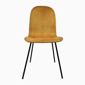 Mid-Century Italian Plywood Dining Chair, 1950s