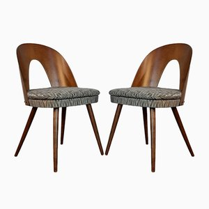Walnut Dining Chairs by Antonín Šuman for Mier, 1962, Set of 4