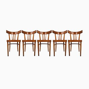 Mid-Century Bentwood Dining Chairs from KOK, 1950s, Set of 5