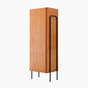 Mid-Century Italian Iron and Wood Wardrobe, 1950s