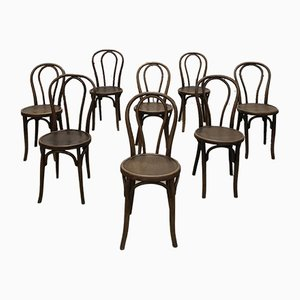 Antique Beech Dining Chairs by Michael Thonet, Set of 8