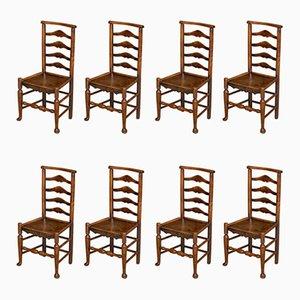 Antike georgianische Esszimmerstühle aus Ulmen- & Eschenholz mit Leiterlehne, 8er Set
