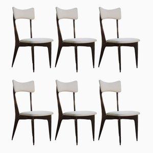 Italienische Esszimmerstühle mit Gestell aus Ebenholz von Ico und Luisa Parisi, 1950er, 6er Set