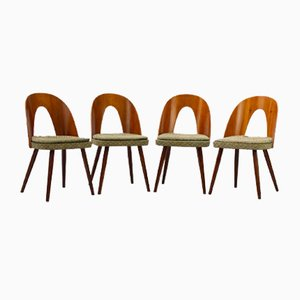 Plywood Dining Chairs by Antonín Šuman for Tatra, 1960s, Set of 4