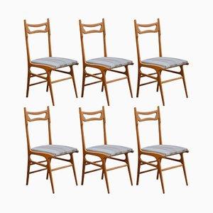 Mid-Century Italian Beech Dining Chairs, 1950s, Set of 6
