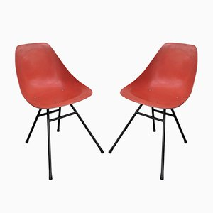 Ladybird Chairs by René Jean Caillette for Steiner, 1960s, Set of 2